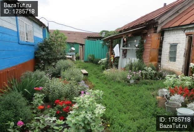 Донгуз саратовская область фото